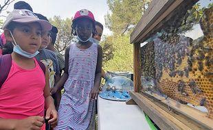 Les enfants de l'école Ariane Sud-Marcel Pagnol devant les abeilles jeudi 17 juin 2021, dans le quartier de l'Ariane à Nice