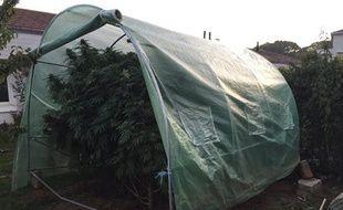Le cannabis poussait dans le jardin de cette maison nantaise