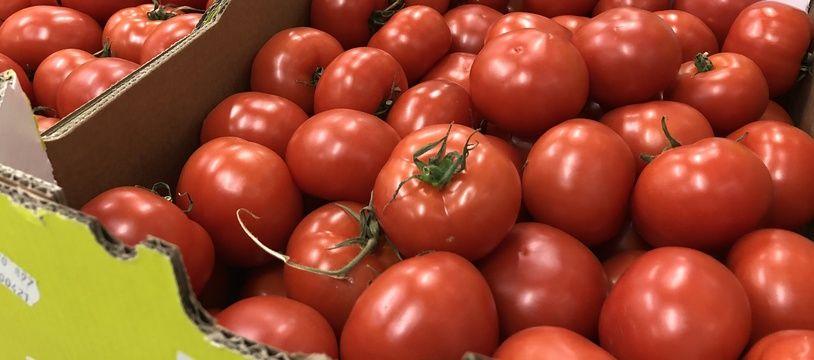 Illustration de tomates ici stockées dans des cagettes chez un grossiste.