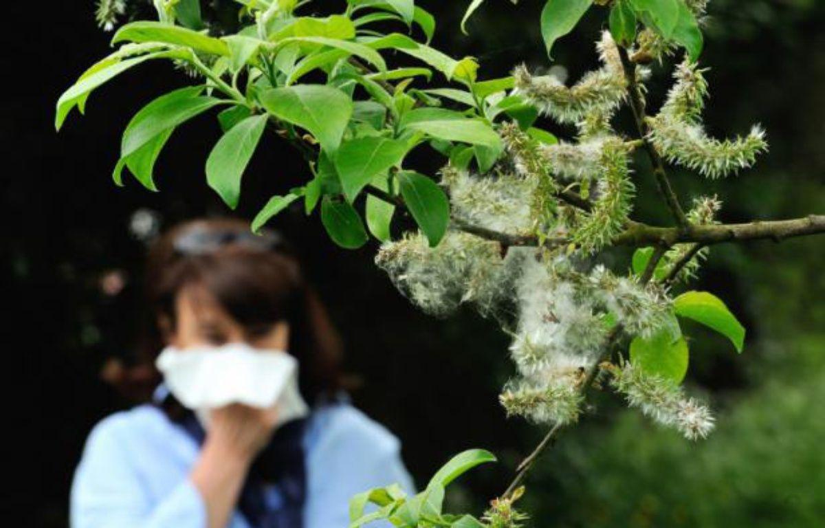 Photo d'une femme qui souffre d'une allergie  aux pollens prise le 18 mai 2013 à Godewaersvelde, dans le nord de la France – PHILIPPE HUGUEN AFP