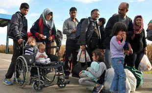Des migrants en provenance de Croatie franchissent la frontière hongroise par le village de Baranjsko Petrovo Selo, le 4 octobre 2015