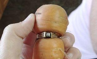 Treize ans après, une Canadienne a retrouvée sa bague de fiançailles autour d'une carotte
