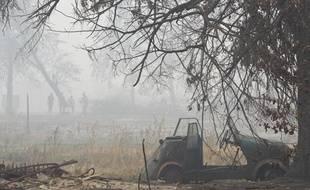 Quelque 554 feux continuaient à couvrir dimanche 190.400 hectares.