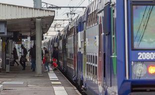 Ile-de-France Mobilités va amputer le RER D de trois branches qui mènent dans l'Essonne et le Loiret. (Illustration)