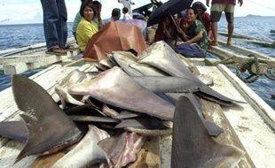 L'Union européenne a durci jeudi sa réglementation en faveur de la protection des requins, dont plusieurs espèces sont surpêchées, en vue de mettre fin pour de bon à la découpe d'ailerons à bord encore pratiquée via des dérogations.