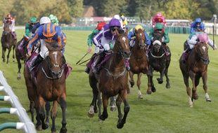 Le Grand Prix de Chantilly d'équitation, en 2016 (photo d'illustration).