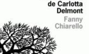 Une faiblesse de Carlotta Delmont