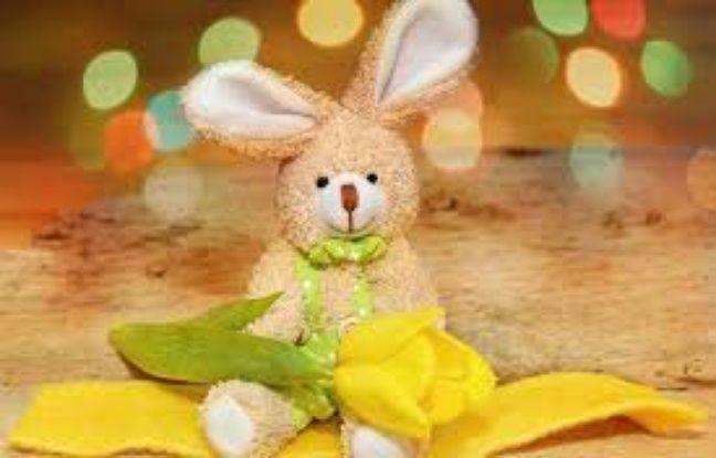 Sydney: Une petite fille retrouve son doudou perdu grâce à Twitter