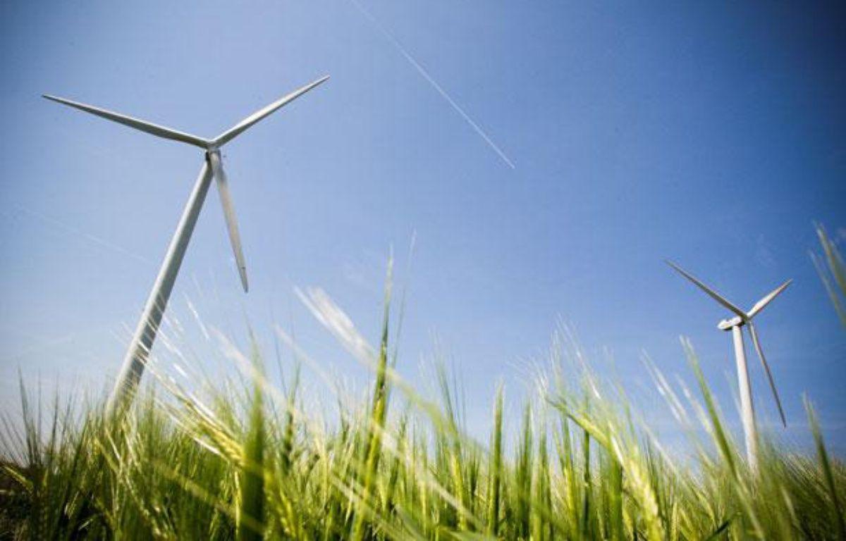 Le parc d''éoliennes d''Avignonet-Lauragais. – FREDERIC SCHEIBER / 20 MINUTES