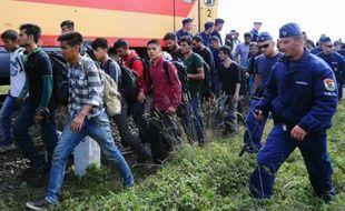 Des réfugiés escortés vers un train par des policiers le 8 septembre 2015 près de Szeged à la frontière de la Serbie et de la Hongrie