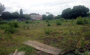 Friche de l'Ilot Lapujade, à Toulouse