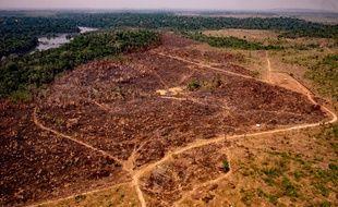 Dans un secteur de l'Etat du Mato Grosso, à l'été 2019.