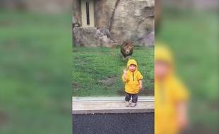 Un lion et un enfant sont dans un zoo, le lion attaque, qui reste t-il ?