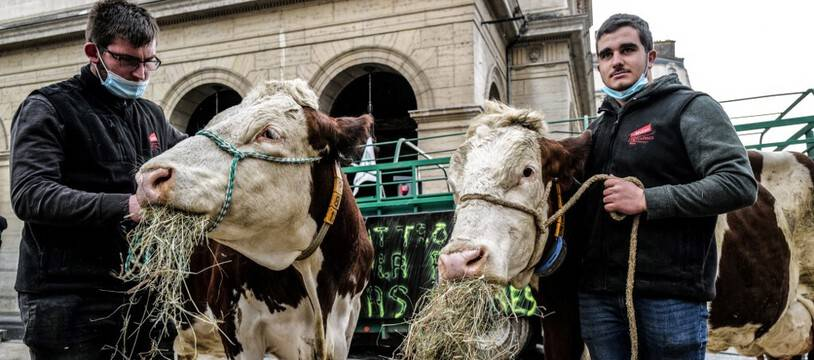 Les agriculteurs ont manifesté lundi pour dénoncer les menus sans viande dans les cantines scolaires de Lyon.