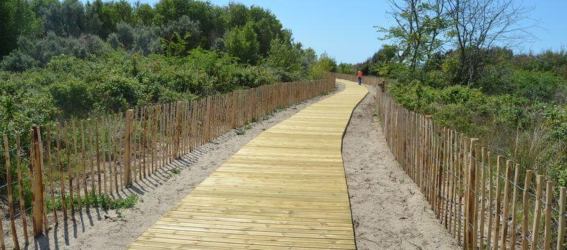 Les chemins de bois qui mènent à la plage, au lido, entre Carnon et la Grande-Motte (Archives)
