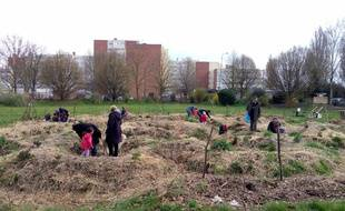 Les bénévoles de l'association «Les Jardins partagés du Grand Cerf» prépare le terrain.