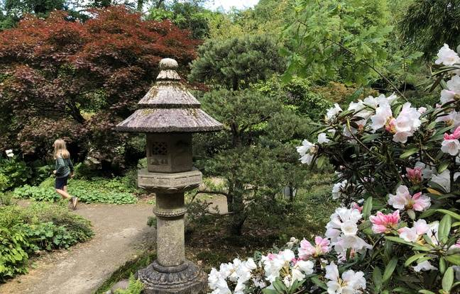 Le parc est composé de 24 jardins thématiques avec des essences venues du monde entier.