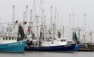 Les bateaux sont cloués à quai en raison du mauvais temps, le 2 mai 2010 au port de Venice, en Lousiane, alors que la marée noire menace les côtes.