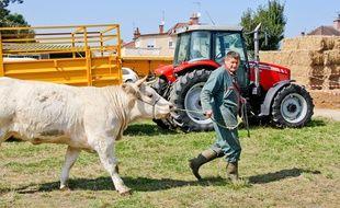 Comme les secteurs porcin et laitier, l'élevage bovin est en crise en France, où 10% des éleveurs pourraient bientôt déposer le bilan selon les estimations du 17 juillet 2015 du ministère de l'Agriculture. secteurs bovins, porcins et