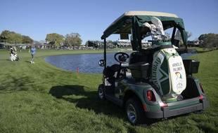 Une voiturette de golf (illustration).