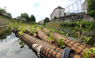 Des jardins flottants ont été confectionnés pour embellir la Vilaine.