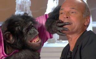 Extrait de «Salut les Terriens», avec Laurent Baffie et un chimpanzé (normal)