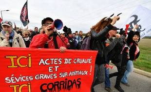 Des manifestants anticorrida à Rodilhan, dans le Gard, le 16 octobre 2016.