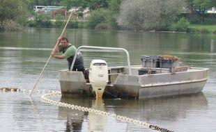 Un pêcheur professionnel a prélevé des poissons toute la journée.