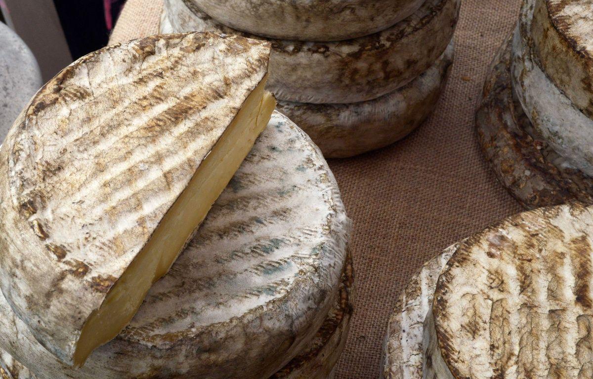 Photo illustration d'un fromage de fabrication artisanale dans l Auvergne. Bourgoin jallieu le 10/10/2015 : – MOURAD ALLILI/SIPA