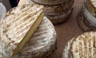 Photo illustration d'un fromage de fabrication artisanale dans l Auvergne. Bourgoin jallieu le 10/10/2015 :