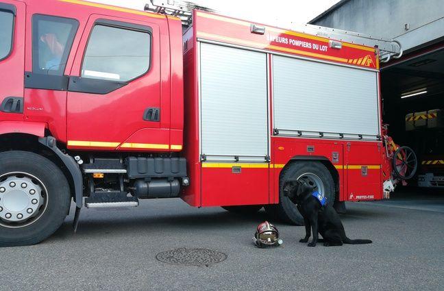 Sept sapeurs-pompiers de Cahors ont été formés pour s'occuper de LOL.