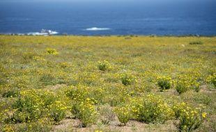 Le Bolivie a, jadis, eu 400 km de littoral, le long du fameux désert de l'Atacama.
