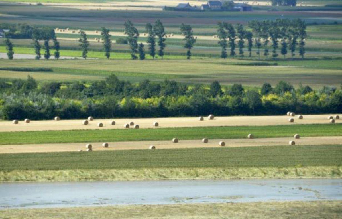 La mise sur le marché des pesticides et phytosanitaires change de mains et dépendra désormais de l'Agence de sécurité sanitaire, et non plus du ministère de l'Agriculture – Miguel Medina AFP