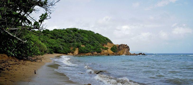 Une plage en Martinique (illustration).