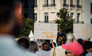 Manifestation contre l'ouverture de la PMA prévue dans la loi de bioéthique