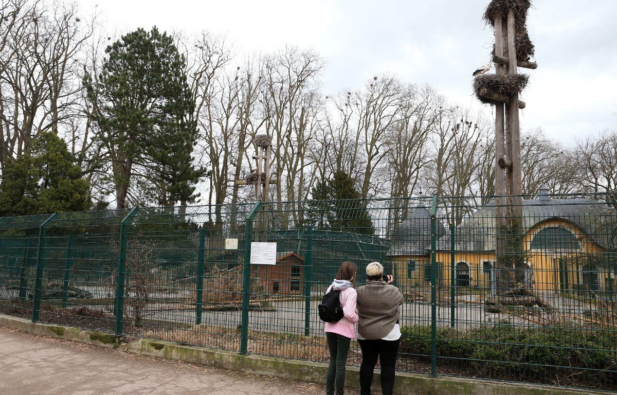 Le zoo de l'Orangerie. Strasbourg le 19 mars 2017. – G. Varela / 20 Minutes