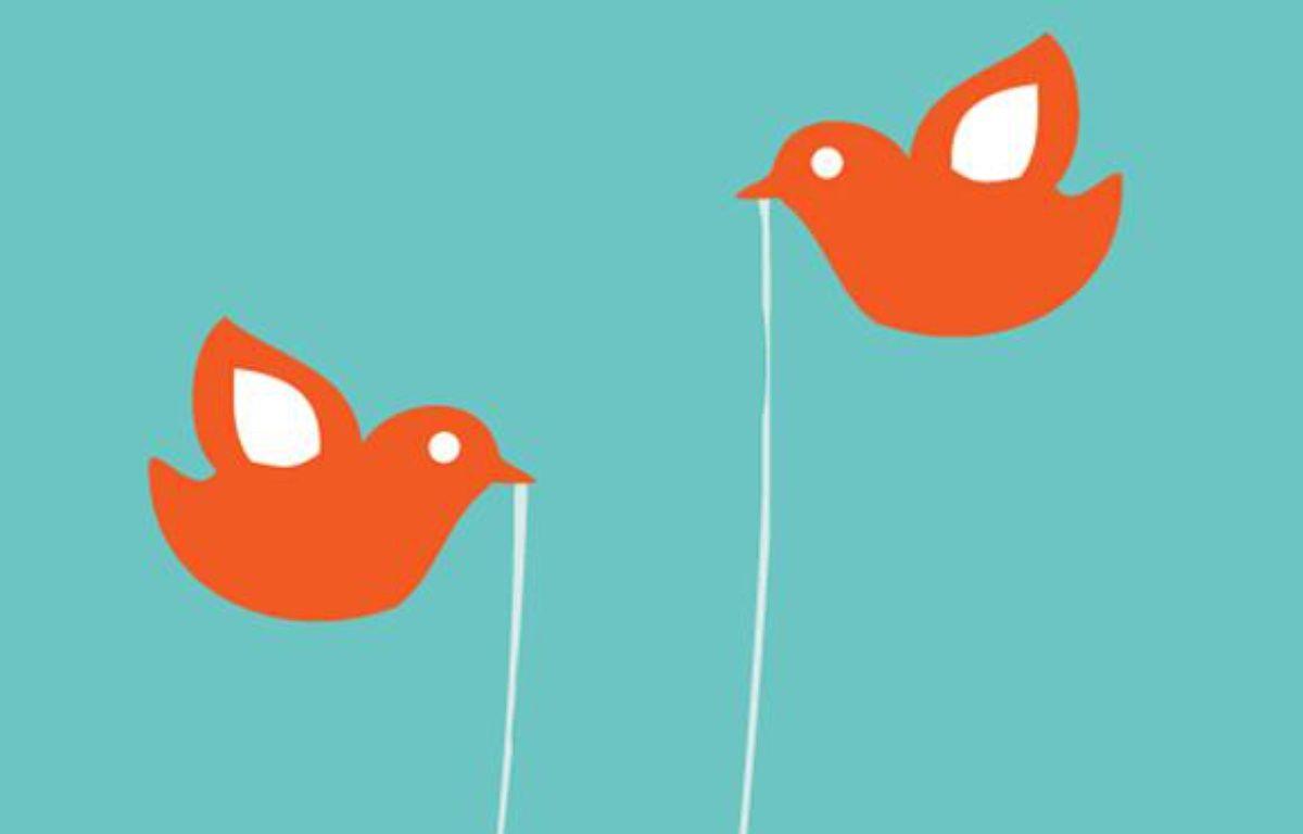 Détail de l'image qui s'affiche quand Twitter a un bug – DR