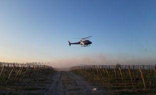 L'hélicoptère ramène les masses d'air chaudes vers les rangs de vignes.
