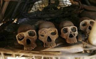 Des crânes de chimpanzés dans un parc de Côte d'Ivoire.