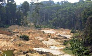 """A l'occasion de la visite en France de la présidente brésilienne Dilma Rousseff, mardi et mercredi, l'organisation environnementale WWF a réclamé la """"ratification urgente et l'entrée en vigueur"""" d'un accord signé en 2008 entre les deux pays pour lutter contre l'exploitation aurifère illégale."""
