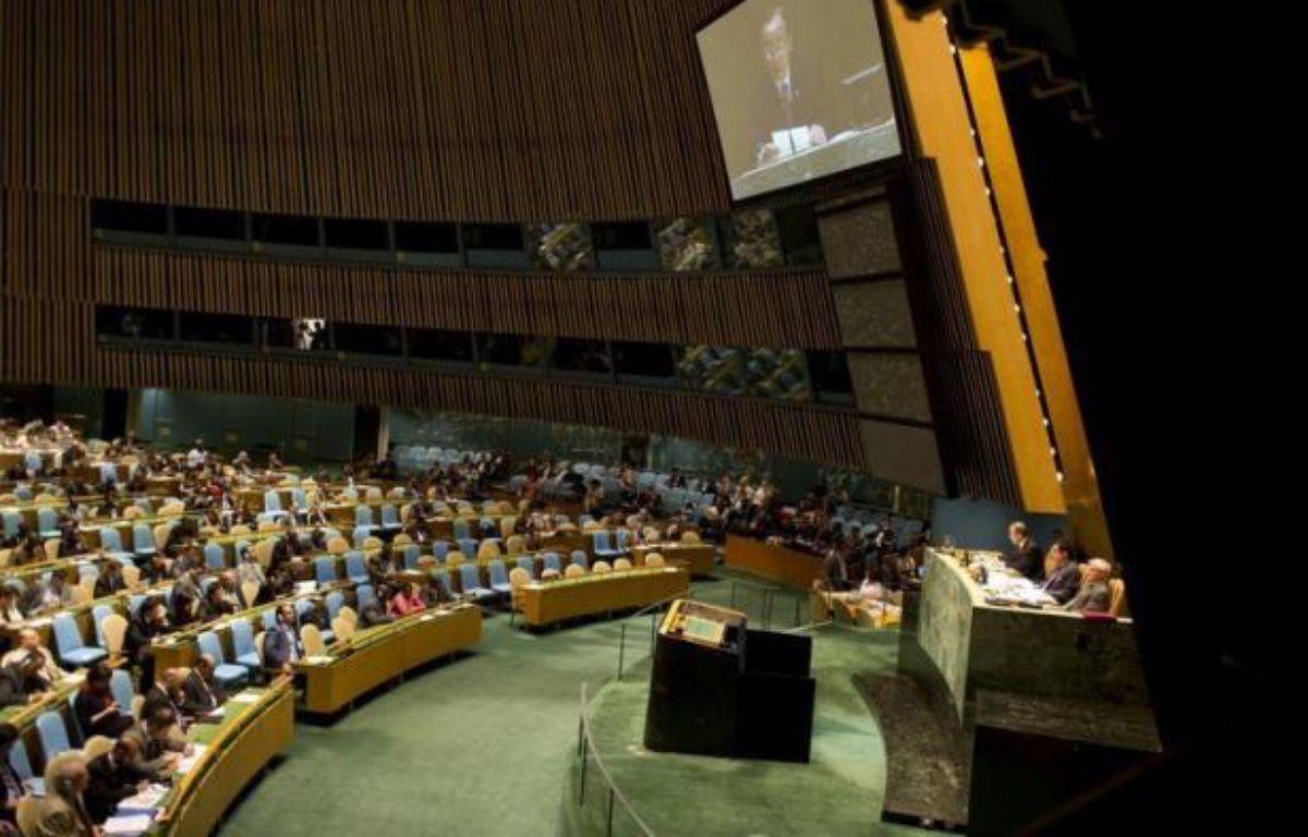 Le Conseil de sécurité a annoncé jeudi la fin de la mission des observateurs de l'ONU en Syrie. – Don Emmert afp.com