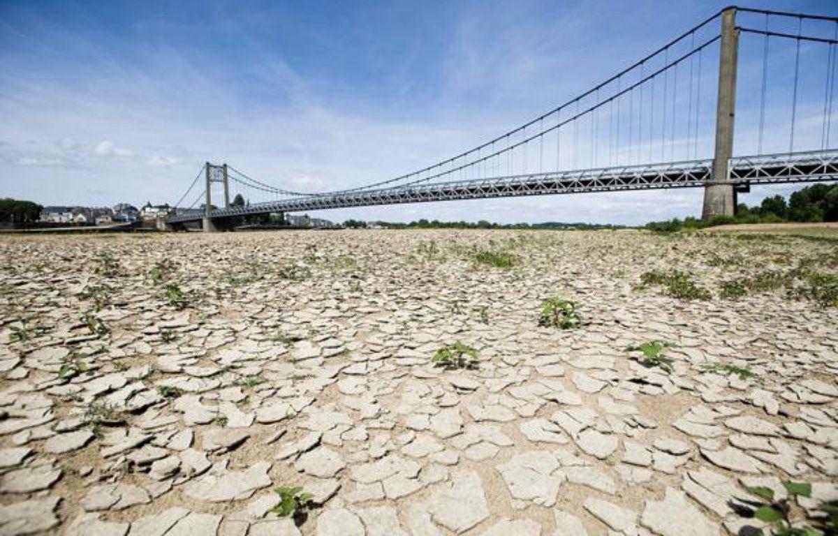 A cause de la sécheresse, la terre est craquelée à certains endroits, comme ici près d'Ancenis en Loire Atlantique, le 22 mai 2011. – JS EVRARD/SIPA