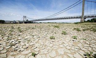 A cause de la sécheresse, la terre est craquelée à certains endroits, comme ici près d'Ancenis en Loire Atlantique, le 22 mai 2011.