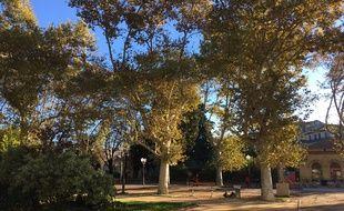 A Montpellier, ce mardi 30 octobre, le soleil est revenu.