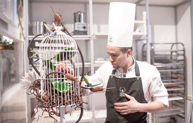 Vincent Vallée et sa cage aux oiseaux
