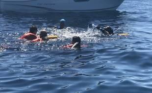 Tony Moggio a traversé jeudi le Golfe de Saint-Tropez à la nage en 3h05.