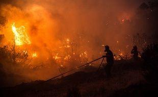 Un énorme incendie ravage depuis plus de 30 heures l'île d'Eubée, en Grèce.