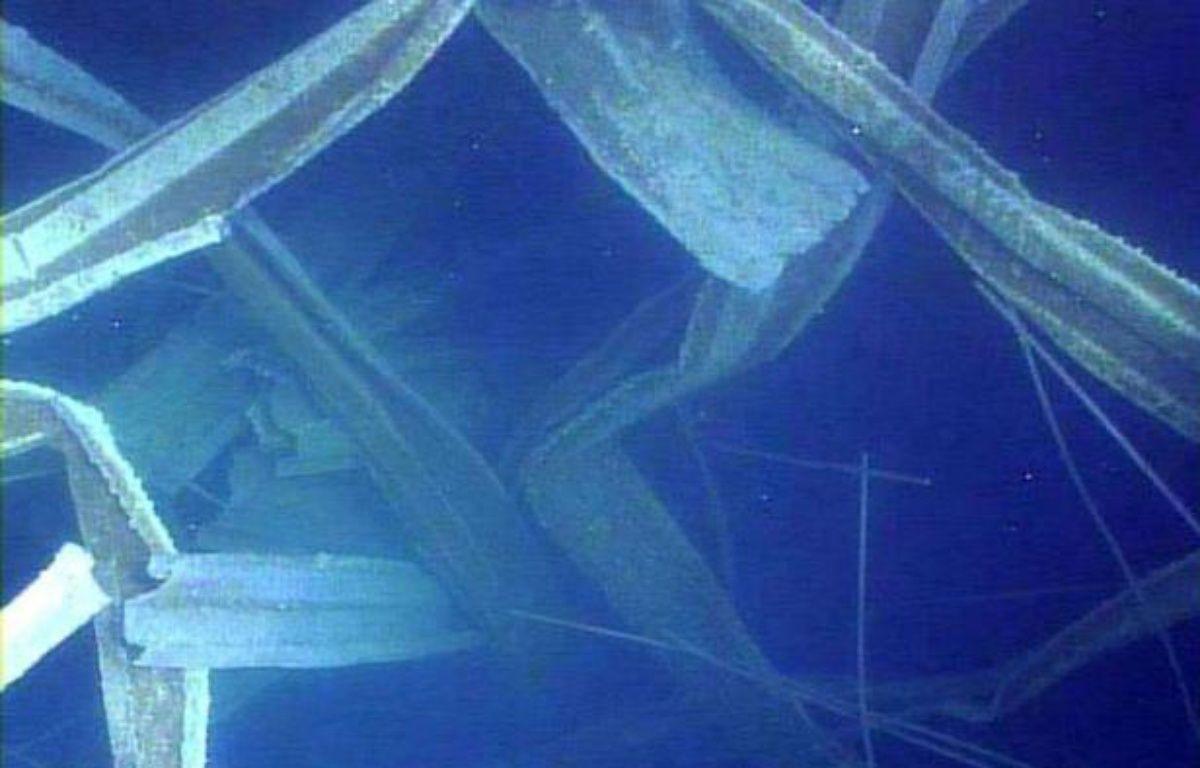 L'opérateur de la centrale nucléaire accidentée de Fukushima (nord-est du Japon) a diffusé de nouvelles images révélant l'étendue des dégâts dans une piscine de stockage du combustible usagé du réacteur 3, l'un des trois les plus critiques. –  afp.com