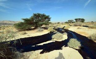 Du pétrole coule d'un oléoduc dans le désert d'Arava, en Israël, le 4 décembre 2014