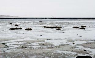 Illustration de la baie de Canche, dans le Pas-de-Calais